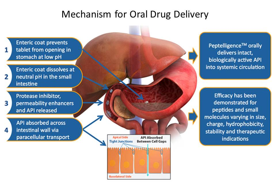 Enteris BioPharma mechanism for oral drug delivery example