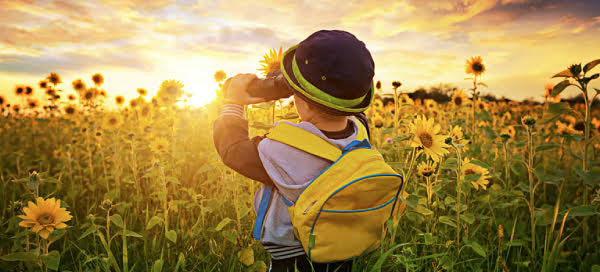 Enteris BioPharma Photo image of young child with binoculars looking into sunflower field at sunrise.